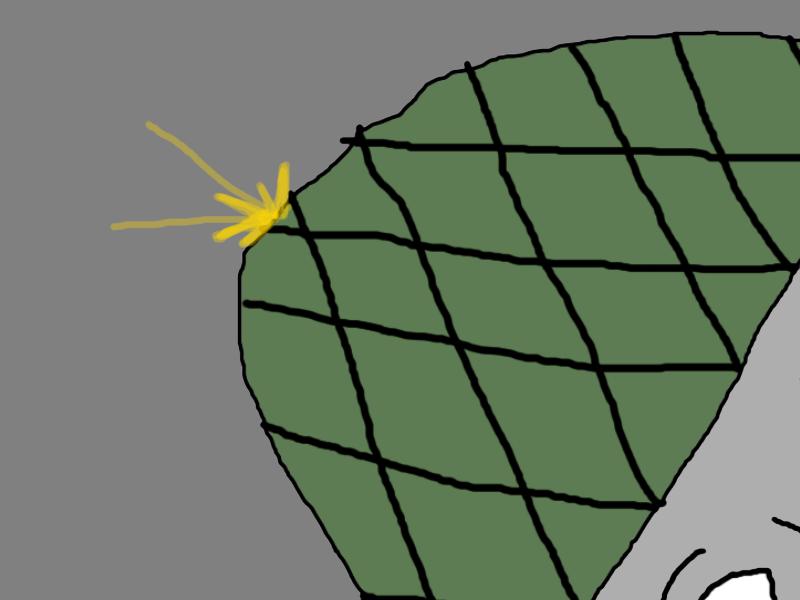 A bullet contact